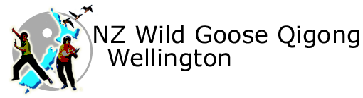 New Zealand Qigong